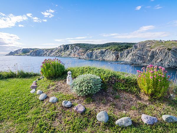 Newfoundland-Discovery-1.jpg