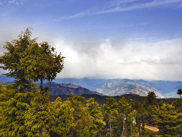Tour-of-Golden-Triangle-and-Shimla3.jpg
