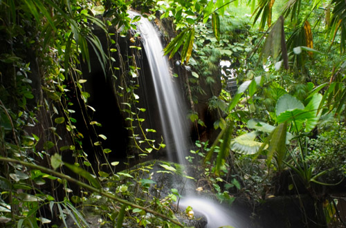 amazon-rainforest-waterfall.jpg