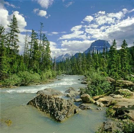 athabasca-river.jpg